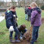 Schüler des MGS pflanzen an der Gräfte Büsche
