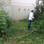 Pflanzen-Scheise an der Grundschule Ländchenweg 10 August 2015